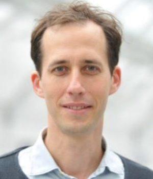 Photo of Professor David Capper